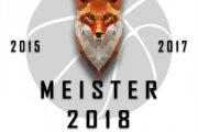 logo_meister2018